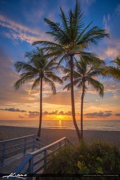 Miami Beach, Hallandale Beach, South Beach, Miami Florida, Beautiful Sunrise, Beautiful Beaches, Ocean Pictures, Ocean Pics, Hollywood Beach