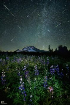Cool Pictures Of Nature, Beautiful Scenery, Amazing Nature, Astronomy