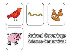 Animal Covering Cards Teaching Science, Life Science, Animal Coverings, Animal Science, Project Ideas, Projects, Science Ideas, Life Cycles, Wild Things