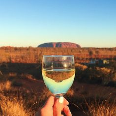 {#GirlEatAustralia with @yhaaustralia} A glass of Australian chardonnay  at sunset overlooking Uluru @exploreuluru. It was a magnificent way to end the day at Sounds of Silence dinner, where we got to try bush-inspired food (crocodile, kangaroo, barramundi and quandong) and stargaze at the clear unpolluted sky . I got to see Jupiter and 3 (out of 67) of its moons! Very fascinating as i've always been interested in astronomy and the universe beyond our earth.  Uluru is a large sandstone…
