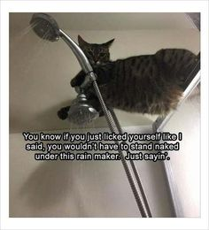 As though showering is a punishment lol crazy cat
