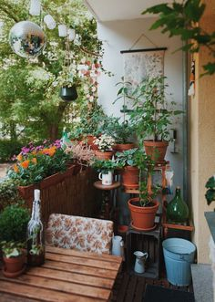 Tiny Balcony, Small Balcony Decor, Balcony Plants, Balcony Design, Balcony Garden, Garden Design, Small Courtyard Gardens, Small Courtyards, Outdoor Gardens