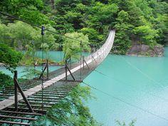 夢の吊り橋【静岡県】 : 日本国内の死ぬまでに一度は行きたい観光名所 - NAVER まとめ