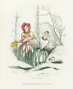 Первые весенние цветы Подснежник и Примула в зимнем лесу