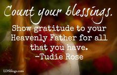 Gratitude - LDSBlogs The irony of Black Friday after a day of gratitude. #LDSBlogs #Quotes #Gratitude