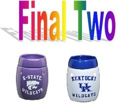 FINAL TWO!!   If you are interested in ordering please click on the link and let's get it sent to you!   https://lhackley.scentsy.us/Scentsy