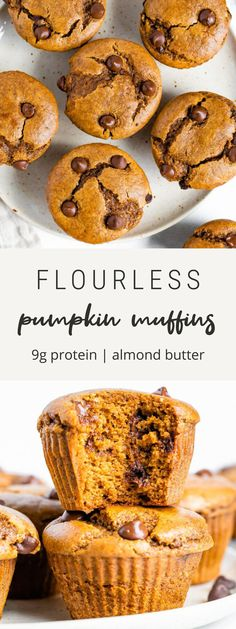 Flourless pumpkin muffins made with almond butter, chocolate chips and pumpkin. No flour, no oil and no dairy. 9 grams of protein in each muffin! #eatingbirdfood #muffin #pumpkin #flourless #chocolatechip #pumpkinspice #breakfast #snack #mealprep Mini Chocolate Chip Muffins, Chocolate Chips, Pumpkin Recipes, Fall Recipes, Dip Recipes, Best Chocolate Desserts, Easy Halloween Food, Cheese Recipes, Cheese Dips