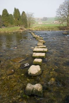 Stepping stones, Yorkshire Dales  Walking in The Dales, nothing better.