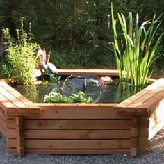 Above Ground Ponds For Backyards Ponds Ideas