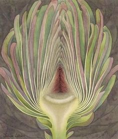 Julia Loken is an English botanical artist. Inspiration for her work comes from the garden surrounding her home in the village of Eynsham, west of the city of Oxford.