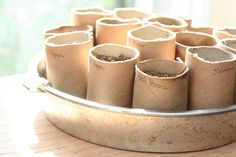 You can start your seedlings in toilet paper rolls and then just plant the whole thing!