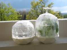 Flexible Mini Greenhouse-Dome with Pot (clickable) by graph.