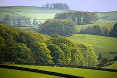 green #fields stone #walls