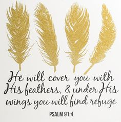 """[""""This modern look plaque paired with an encouraing piece of Scripture is perfect for adding to your home decor. Printed on the front in black stylish font it reads, """"He will cover you with HIs feathers,"""