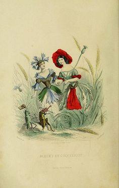 lesfleursanime by J.J. Grandville   Public Domain Review, via Flickr