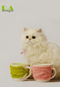 Our lovely #kitty with our #radesign #mugs