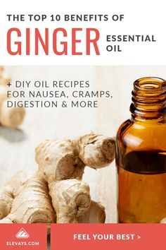 The Top 10 Benefits of Ginger Essential Oil + DIY Ginger Oil Recipes Essential Oils For Constipation, Essential Oils For Cramps, Oil For Constipation, Essential Oil Menstrual Cramps, Turmeric Essential Oil, Essential Oil Diffuser Blends, Best Essential Oils, Ginger Benefits, Health Benefits
