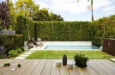 Five Dock Garden – Designed by Harrison's Landscaping A Mini Pool is quickl… Backyard Pool Landscaping, Small Backyard Pools, Backyard Pool Designs, Small Pools, Swimming Pools Backyard, Swimming Pool Designs, Outdoor Pool, Lap Pools, Indoor Pools