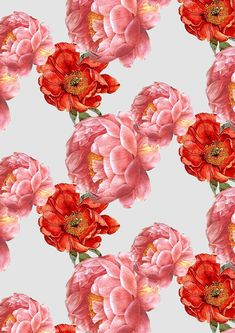 vintage floral pattern | cardboardcities - illustration, colour, fashion + lifestyle blog UK