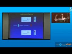 Dr. David Segal: Molecular Therapies in Angelman Syndrome (Friday aftern...