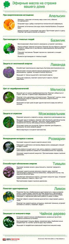 Эфирные масла на страже вашего дома - Инфографика