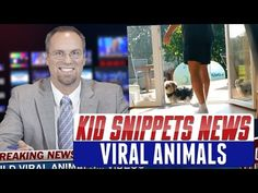 """Kid Snippets News: """"Viral Animals"""" (Imagined by Kids) - YouTube"""