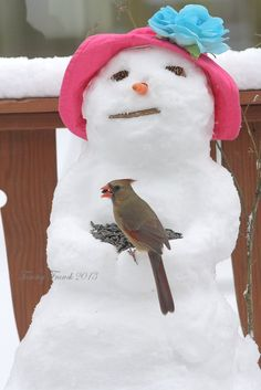 bird feeder snow lady--this looks like it was made in a patio pot.  cute pictures of other birds and even a squirrel eating the    seeds