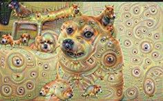Image result for visual distortion animals