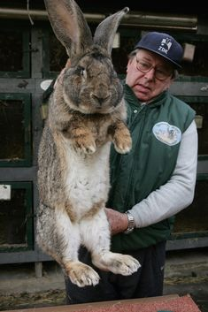 """No one steps to me and lives."" 