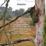 Gedicht van Loes: Kampina