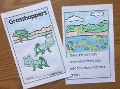 Grasshopper easy book for kids