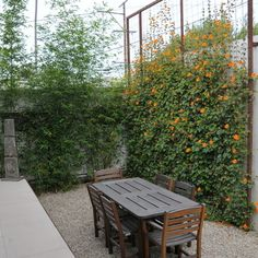"""By SB Garden Design """"iron and wire trellis can give privacy; and at the same time, it can give an interesting focal point in the yard."""" """"paired with planter box above with flowers tumbling over for privacy in lower patio"""" """"with a wire trellis. Less expected than wood, a metal framed trellis gives the patio an appealingly rustic look. The custom trellis design shown here is from TerraTrellis."""""""