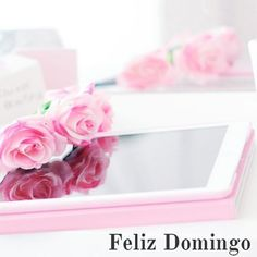 Feliz Domingo Amigos  http://ift.tt/1J58QT4 ================================ #sunday #domingo #panama #entrepreneur #emprendedores #relax #picoftheday #photooftheday #instalike #instamood #enjoying #flowers #follow #ipad