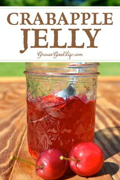 Homemade Crabapple Jelly With No Added Pectin - Tips For Making And Canning Homemade Crabapple Jelly Crabapples Have Enough Natural Pectin So No Additional Pectin Is Needed For This Crabapple Jelly Recipe Pectin Is A Naturally Occurring Complex C Jelly Recipes, Jam Recipes, Canning Recipes, Crab Apple Recipes, Canning Tips, Drink Recipes, Crabapple Jelly Recipe, Crab Apple Jelly, Mint Jelly