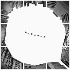 Instagram créatif par Ng Wei Jiang - Journal du Design