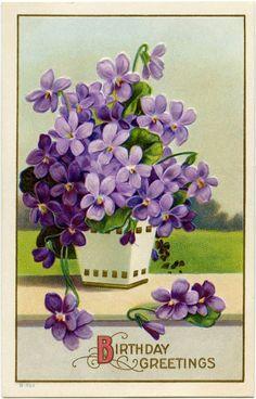 Victorian postcard graphics, vintage birthday postcard, purple flower clip art, old fashioned birthday card, vintage flower illustration