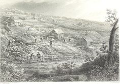 An historic etching of the Concorida Gold Mines at Daylesford in Victoria by J. Victoria Australia, South Australia, Gold Miners, Gold Map, Australian Painting, Victorian Gold, Historical Pictures, Vintage Images, Past