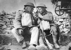 soldats australiens lors de la prise de Bardia janvier 1941