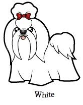 http://www.cartoonizemypet.com/shop/dogs/shih-tzu/show/white.jpg