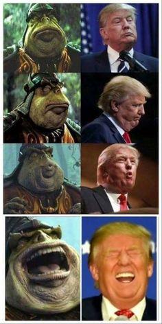 Breaking: Donald Trump a Gungan impostor! More memes, funny videos and pics on Life Humor, Mom Humor, Funny Love, The Funny, New Memes, Funny Memes, Funny Videos, Jokes, Star Wars Meme