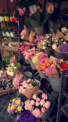 Flowers in Rome.