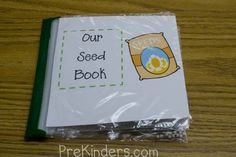 How to make a seed book for your science center w/ ziplock bags & real seeds