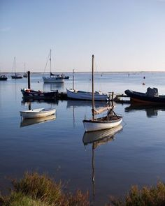Peaceful Autumn waters in Norfolk. #Norfolk #holidayphotography #travel #discover #explore #seetheworld #wheretogonext #instagood #nofilter #loveyourcamera #photographyteacher #learnphotography #photographygoals #photoprojects #knowyourcamera #mumlife #mumwithacamera #workingmum #family