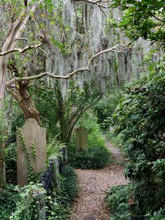 Cemetery of the Unitarian Church, Charleston, SC © 2016 Patty Hankins