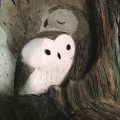 Rob Dunlavey - owl book progress