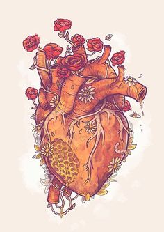 'Sweet Heart' Poster by MathijsVissers Anatomical Heart Drawing, Human Heart Drawing, Cool Heart Drawings, Drawings Of Hearts, Anatomical Heart Tattoos, Human Heart Tattoo, Illustration Inspiration, Heart Illustration, Heart Canvas