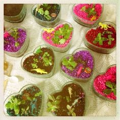 Wee Warhols made these heart terrariums for Valentines gifts. Dinosaur Grave Yards