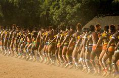 Parágrafos preambulares  1 – Afirmando que todos os povos indígenas são livres e iguais em dignidade e direitos, de acordo com as normas internacionais, e reconhecendo o direito de todos os …