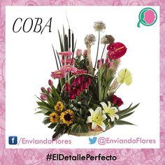 Expresa lo que sientes con la belleza de unas flores. #HazloInolvidable #EnviandoFlores #UnHermosoDetalle #UnaOcasionEspecial #LasFloresPerfectas #UnaOcasionEspecial  #RegalaFlores  Visita nuestra pagina: http://ift.tt/28ZnP63