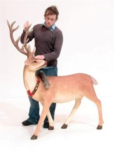 Red Nosed Reindeer Prop